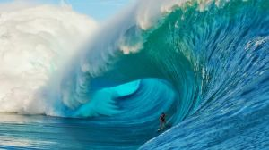cathing_the_wave